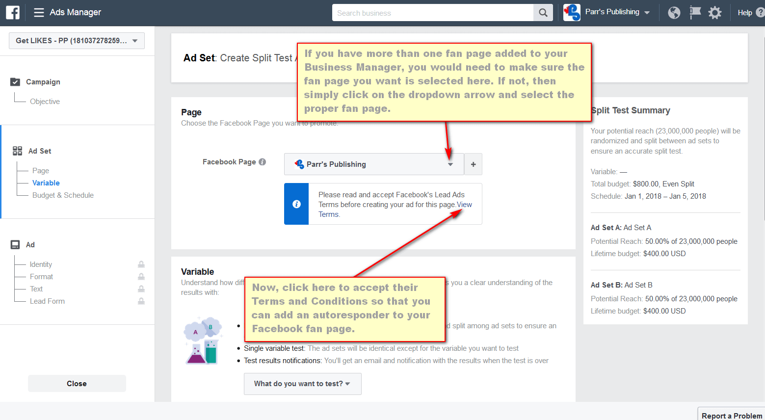 screen print showing where to click on Facebook's Terms and Conditions