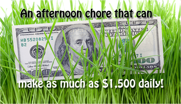 "long grass with an American $100 bill sitting up in it. Text over top reads ""An afternoon chore that can make as much as $1,500 daily!"""