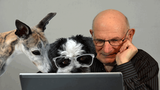 man looking at his laptop with two dogs looking at it with him