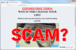 """screen print of the Easy Retired Millionaire website with """"SCAM?"""" printed on top"""