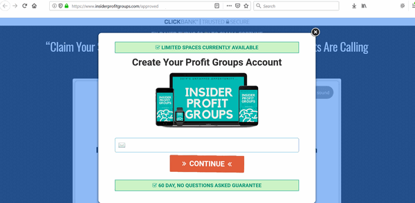 screen print of Insider Profit Groups website popup window once you clicked to buy