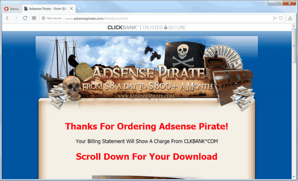 screen print of Adsense Pirate's Thank You page