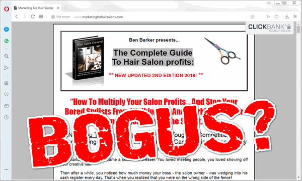 screen print of Marketing for Hair Salons website with