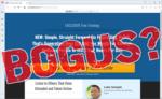 "screen print of Six Figure Side Hustle website with ""Bogus?"" overtop"