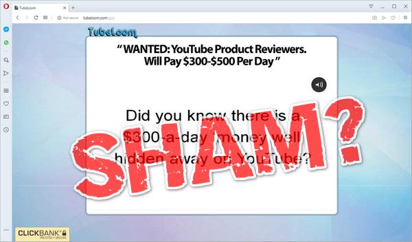 "screen print of Tubleloom's website with ""Sham?"" written overtop"
