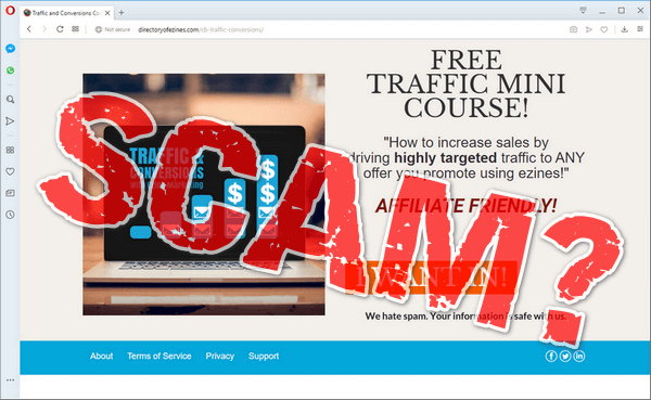 "screen print of the Free Traffic Mini Course website with, ""SCAM?"" overtop"
