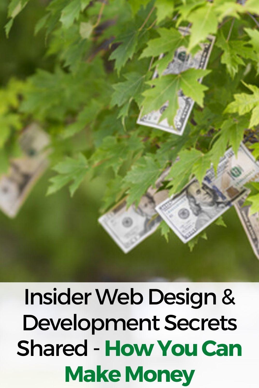 Insider Web Design and Development Secrets Shared