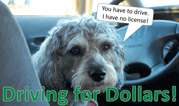 Driving for Dollars!