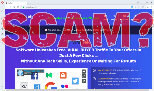 "screen print of vendor's website with ""SCAM?"" overtop"