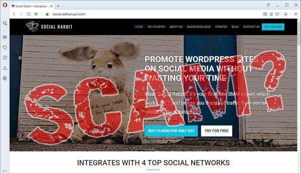 screen print of vendor's website with