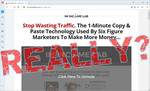 """screen print of vendor's website with """"Really?"""" over top"""