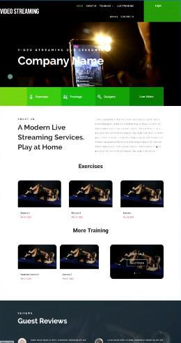 screen print of streaming website