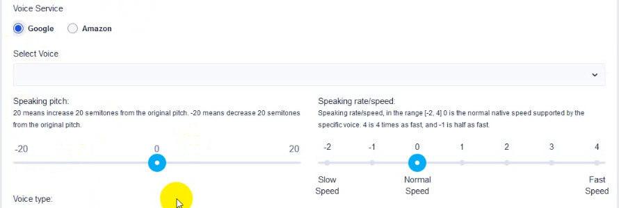 screen print of Google's voice settings