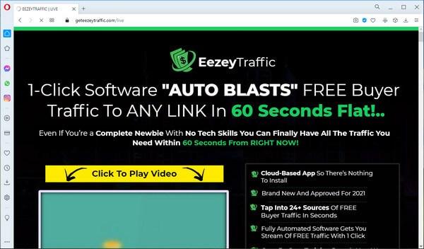 screen print of vendor's website